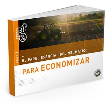 eBook Economía